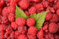 Raspberry oil has the highest SPF among natural sunscreens
