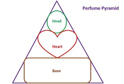 Perfume in any form be it a perfume oil or a solid perfume consists of head, heart and base notes.